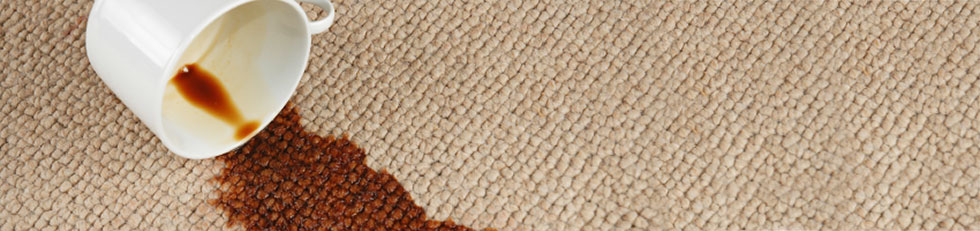 Carpet Cleaning Stain Removal